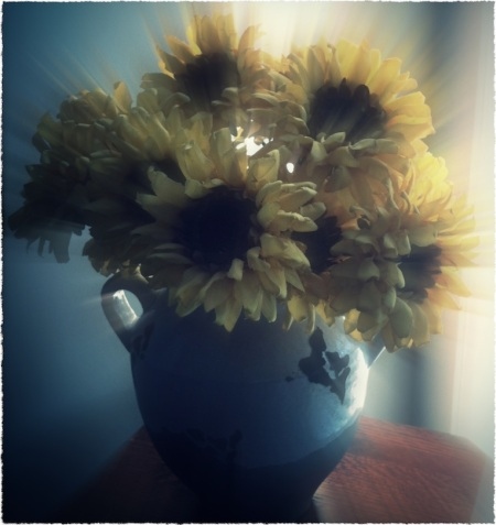 GlamourSunflowers1_2ProtonModSatGlowFrayed 2