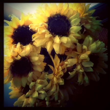 RepixSunflowers4_2