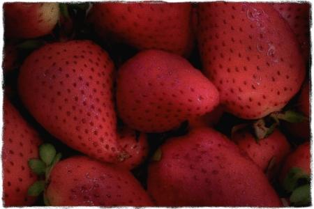 StrawberriesYesteryearModSatBriteConGrit