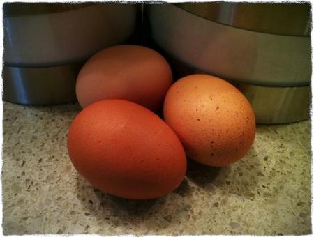 EggsBokeh1vertflipMidtoneColorFilterGrit 2