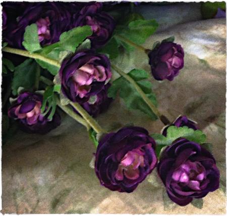 FlowersAndCloth2_2ColorFilterSatMidtoneGrainSharpenBrushup 3