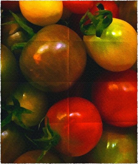 TomatoesBokeh2SatMidtoneColorFilterFrayed8foldHalftone2ReborderedColorCorrected
