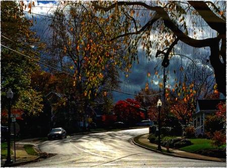 AutumnStreet1Intensify2 3SmallCrop2_2Bokeh2MidtoneSatGrainFrayedBoosted 2