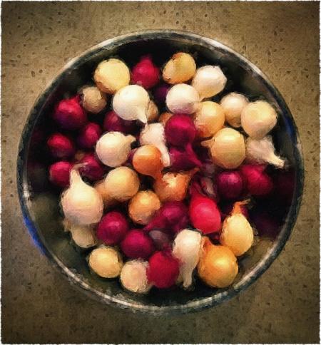 Onions2Bokeh1MidtoneFrayed 2