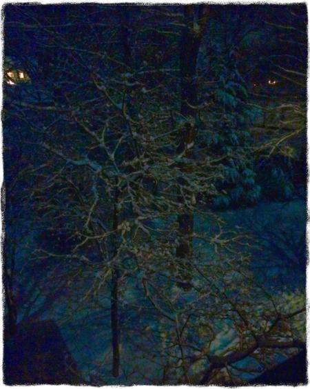 MoonlightOnSnowfallAltMidtoneSatVibHighlightsShadowsGrit 2