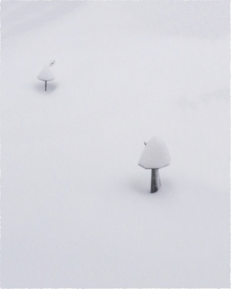 MidstormFlareFrayed 2.jpg