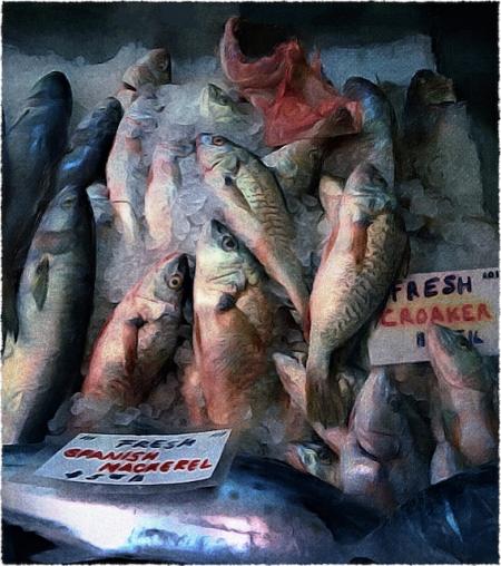 FishmonerAsAnOldMasterSnapheal2FlareFrayed 2.jpg